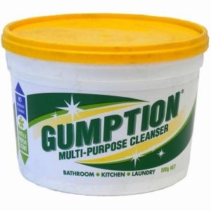 Gumption Paste Cleaner 500Gm