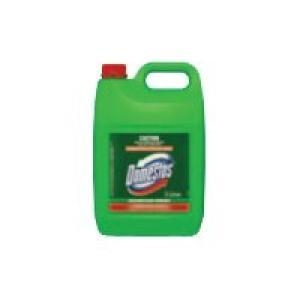 Domestos Disinfectant Mountain Fresh 2X5L - Click for more info
