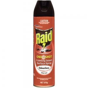 Raid One Shot Odourless Surface Spray 375g - Click for more info
